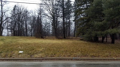 Greenfield Residential Lots & Land For Sale: 4761 S 35th St #Lt2