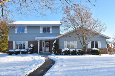 West Bend Single Family Home For Sale: 817 Barberry Pl