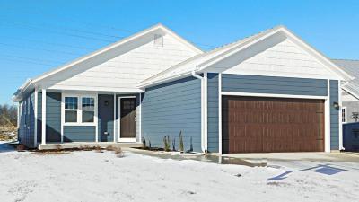 Port Washington Single Family Home For Sale: 1870 Farm View Dr