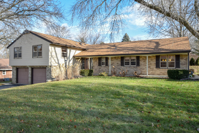 Racine Single Family Home For Sale: 1505 Spring Valley Dr