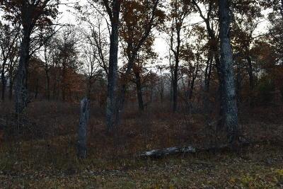 Crivitz Residential Lots & Land For Sale: Lt01161 Johnson Falls Rd