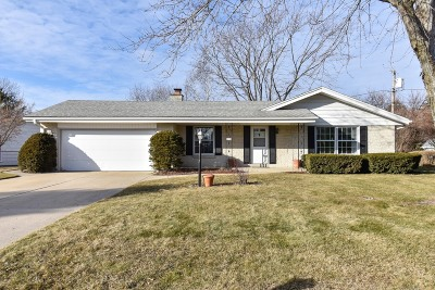 Single Family Home Active Contingent With Offer: 3730 W Alvina Ct