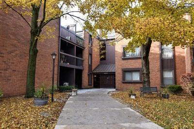 Condo/Townhouse Active Contingent With Offer: 4215 N 100th St #242C