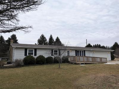 West Bend Single Family Home For Sale: 1863 E Newark Dr