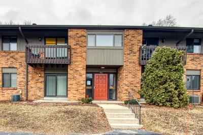 Pewaukee Condo/Townhouse For Sale: 396 Park Hill Dr #G