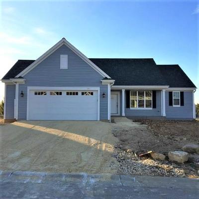Hartford Single Family Home For Sale: 771 Autumn Ridge Ln