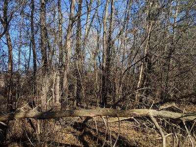 Milwaukee Residential Lots & Land For Sale: 6240 S 43rd St