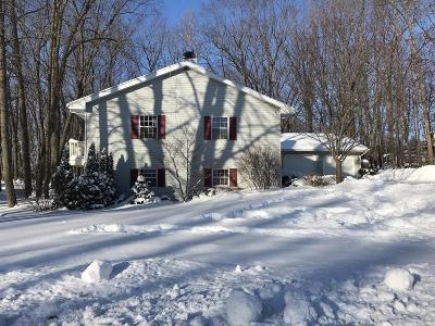 Sheboygan Falls Single Family Home For Sale: 455 Westwood Dr