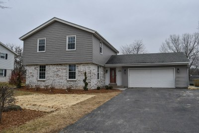 Single Family Home For Sale: W167n10533 Bridle Path