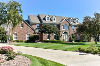 Franklin Single Family Home Active Contingent With Offer: 9254 W Wyndham Hills Ct