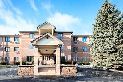 Condo/Townhouse Sold: 530 N Silverbrook Dr #137