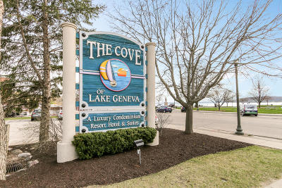Lake Geneva Condo/Townhouse Active Contingent With Offer: 111 Center St #218