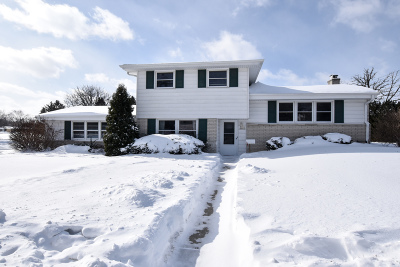 Menomonee Falls Single Family Home Active Contingent With Offer: W151n8623 Marshall Dr