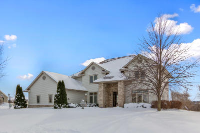 Dousman Single Family Home For Sale: 427 W Red Pine Cir