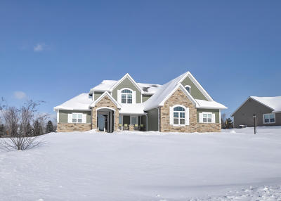 Racine County Single Family Home For Sale: 6408 Blue River Way