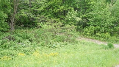 Melrose Residential Lots & Land For Sale: 1 State Rd 54