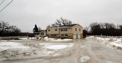 Mukwonago Single Family Home Active Contingent With Offer: 33507 Janesville Rd