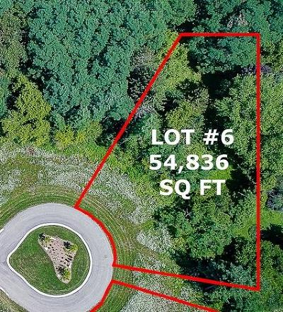 Pewaukee Residential Lots & Land For Sale: Lt6 Rookery Rd