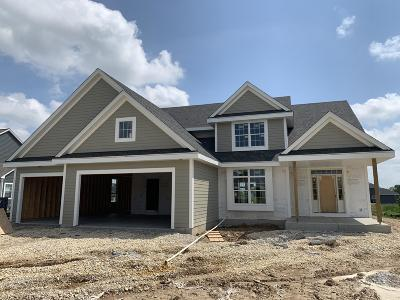 Ozaukee County Single Family Home For Sale: 8011 W Highlander Drive