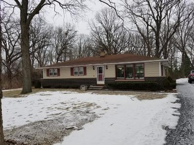 Pleasant Prairie WI Single Family Home Active Contingent With Offer: $249,900