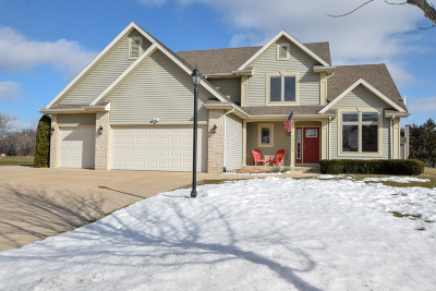Pleasant Prairie Single Family Home For Sale: 10027 65th Ave