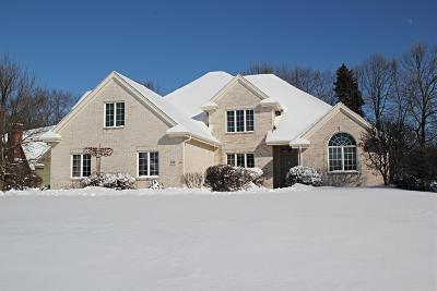 Single Family Home For Sale: 820 Talon Ct