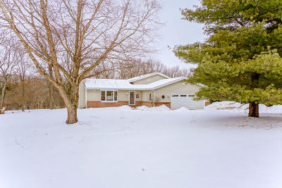 Dousman Single Family Home For Sale: W345s3681 Moraine Hills Dr