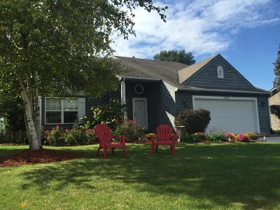 Kenosha County Single Family Home For Sale: 12510 257th