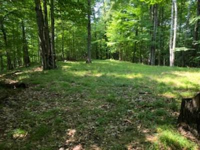 Menominee County, Marinette County Residential Lots & Land For Sale: Lt8 Hemlock Shores Ct