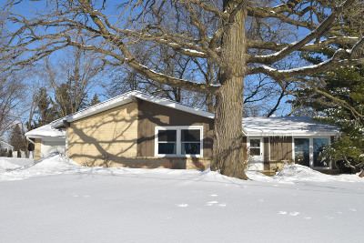 Menomonee Falls Single Family Home For Sale: W176n8414 Sunset Ridge Dr