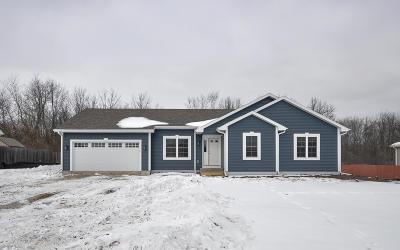 Racine County Single Family Home For Sale: 8810 Lori Ln