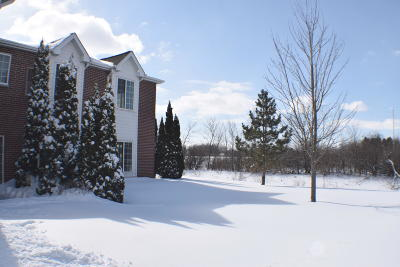 Racine County Condo/Townhouse For Sale: 838 Boulder Trail #205