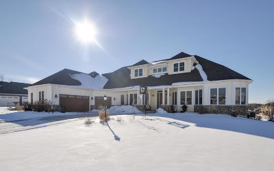 Racine County Single Family Home For Sale: 4800 Long Meadow Ln