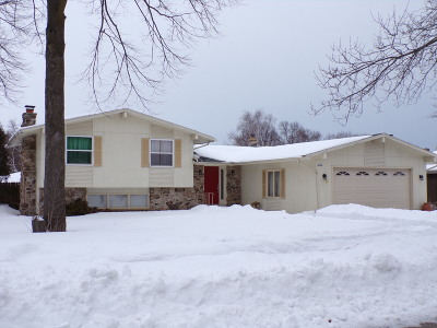 Sheboygan Single Family Home For Sale: 2424 Silver Leaf Ln