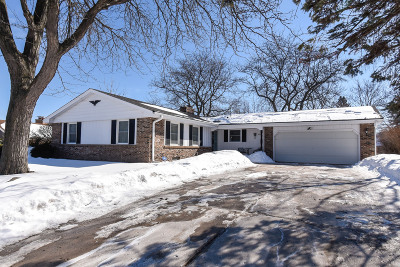 New Berlin Single Family Home Active Contingent With Offer: 3570 S Russel Rd