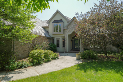Delafield Single Family Home For Sale: W307n2873 Fieldwood Dr