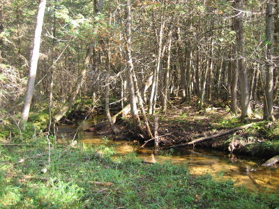 Amberg Residential Lots & Land For Sale: 11.6 Acres Wontor Rd