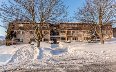 Sheboygan Condo/Townhouse For Sale: 928 Wisconsin Ave #209