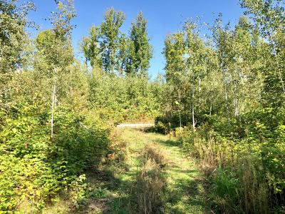 Pembine Residential Lots & Land For Sale: 3.55 Acres Big Woods Trail