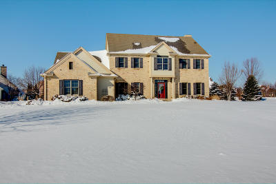 Hartland Single Family Home Active Contingent With Offer: 406 Prairie Grass Ct
