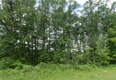 Crivitz Residential Lots & Land For Sale: Lot 21 Winchester Trl