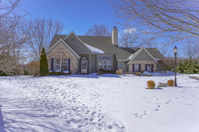 Pewaukee Single Family Home Active Contingent With Offer: 205 Whitetail Ct