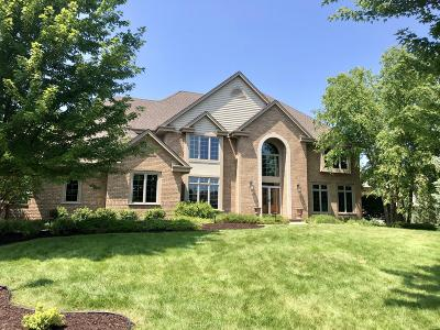Milwaukee County, Washington County, Waukesha County Single Family Home For Sale: 3565 Horseshoe Bend Ct