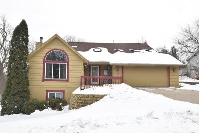 Waukesha Single Family Home For Sale: 1003 Larchmont Dr