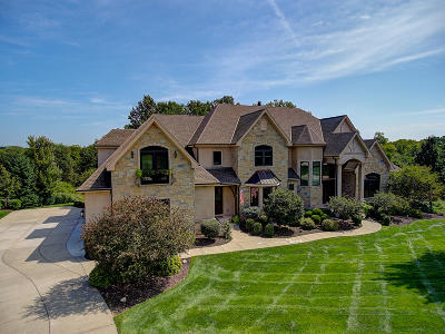 Single Family Home For Sale: 386 Legend View