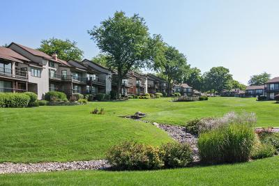 Lake Geneva Condo/Townhouse For Sale: 1070 S Lake Shore Dr #10 A-2