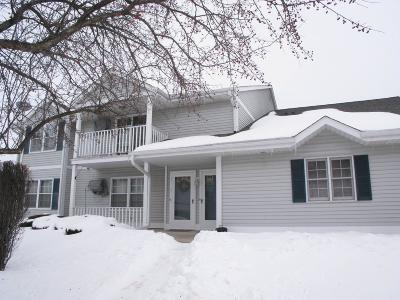 West Bend Condo/Townhouse Active Contingent With Offer: 804 Canterberry Ct #C