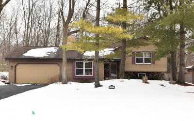 Racine Single Family Home For Sale: 3641 River Bend Dr
