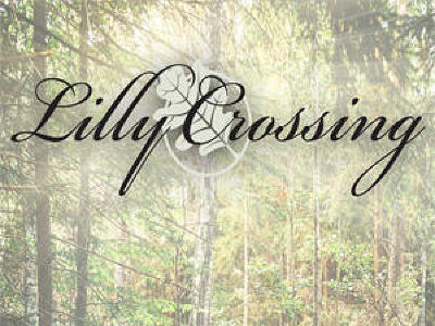 Brookfield Residential Lots & Land For Sale: 2655 Calla Lily Ln