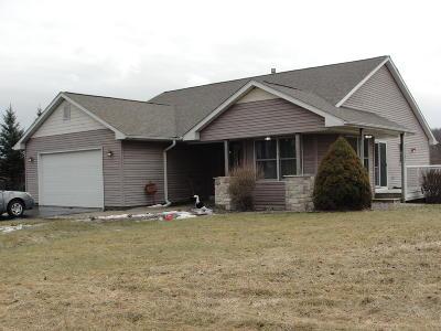 Kenosha County Single Family Home For Sale: 25101 60th St